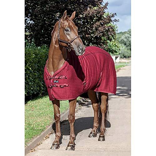 LeMieux Thermo Cool Teppich Pferd XS burgunderfarben