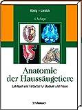 Anatomie der Haussäugetiere: Lehrbuch und Farbatlas für Studium und Praxis
