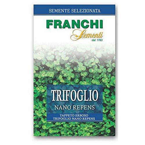 FRANCHI SEMENTI Semente per tappeti erbosi trifoglio repens nano, 250 gr.