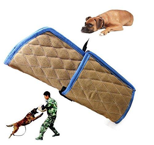 DAN Hunde Training Biss Arm Schutz mit Holzgriff für junge Malinois Arbeit Hundetraining Arbeitstraining K9 Rottweiler