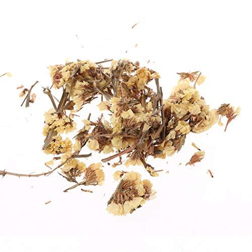Yeptop 5 g natürliche, getrocknete Blütenblätter DIY Wachs Landschaftsbau Rohmaterial für Glas Teelicht Deko Halter Ornament multisize 12# - 12 Trocken-wachs