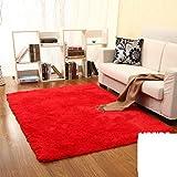 SMALL MAP Tappeti interni/tappeti delle porte/Camera da letto/Cucina / Bagno/Toletta Tappetino antiscivolo,II,50x160cm (20x63inch)