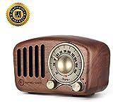 Radio Vintage Haut-Parleur Bluetooth rétro, Aooeou Radio FM en Bois Amélioration des Basses Fortes, Volume Fort, Connexion sans Fil Bluetooth 4.2, Carte TF et Lecteur MP3