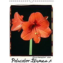 Polacolor Blumen 1 (Wandkalender 2017 DIN A4 hoch): Blumen Stilleben im Polacolor Retro Stile, Fotokunst (Monatskalender, 14 Seiten) (CALVENDO Kunst)