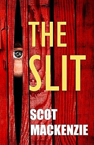 The Slit: Gritty Crime Fiction (DI Jock