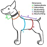 2-TECH Thermo Teddyfell wasserdichter Hundemantel für Whippet mittelgroße Hunde Rückenlänge 50cm – Bauchumfang 56 cm – 66 cm Hundemantel - 3