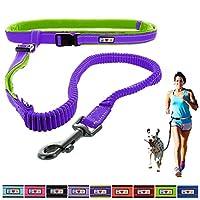 Pawtitas Laisse d'animal de compagnie pour chien mains libres, antichoc, rembourrée et réfléchissante pour le dressage en plein air et la course à pied