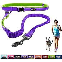 [Gesponsert]Pawtitas Reflektierende, gepolsterte, Antischock-Outdoor-Trainingsleine zum freihändigen Laufen mit dem Hund Lila farbe