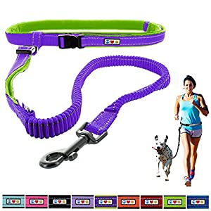 PAWTITAS Running Leash Reflective Leash Padded Leash Anti - shock Training Leash Hands Free Leash Dog Leash Puppy Leash Training Leash 15