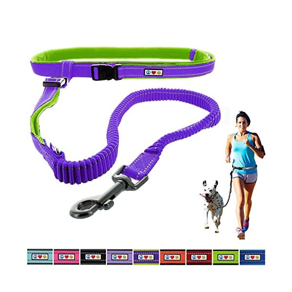 PAWTITAS Running Leash Reflective Leash Padded Leash Anti - shock Training Leash Hands Free Leash Dog Leash Puppy Leash Training Leash 1