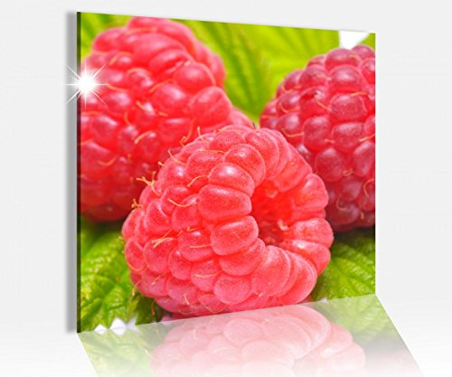 Acrylglasbild 50x50cm Himbeere Beeren rot Blatt grün Obst Frucht Küche Acrylbild Bilder Acrylglas Acrylglasbilder 14A4736, Acrylglas Größe3:50cmx50cm