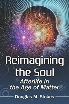 Reimagining the Soul: Afterlife in the Age of Matter par [Stokes, Douglas M.]