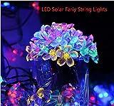 PRIMI Colorful Amazing Dekorative Solar Lampe String