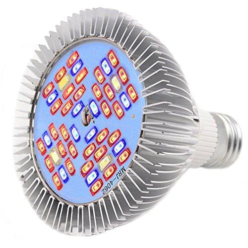 Kyson 24W LED-Leuchtmittel, 120Grad, SMD, 48-teiliges Set, für Innen, Garten, Gewächshaus, Blumen, Hydrokultur, für Bonsai, E27, Vollspektrum mit Lampe (Voll-spektrum-lampen-set)