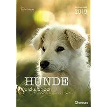 Hunde Quizkalender 2019: Wochenkalender