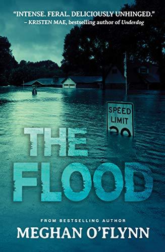 The Flood (English Edition) eBook: Meghan OFlynn: Amazon.es ...