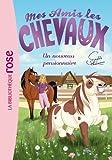 Mes amis les chevaux, tome 1 - Un nouveau pensionnaire
