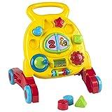 Playgo - Andador con 6 actividades (ColorBaby 44282)