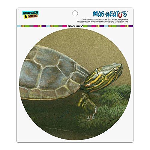 Grafiken und mehr bemalt Schildkröte auf einem Mossy Log Automotive Auto Kühlschrank Schrank Vinyl Kreis - Künstler Schrank