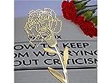 OVVO Einfach Elegante Metallnelken Form Hohl Lesezeichen für Muttertag Geschenke (Golden)