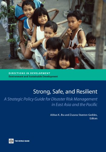 strong-safe-and-resilient-a-strategic-policy-guide-for-disaster-risk-management-in-east-asia-and-the