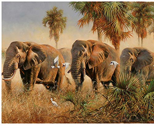 Elefantes Diy Pintura Por Números Animales Moderno Imagen de Arte de Pared...