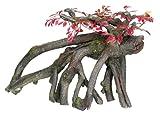 """Nobby 28323 Aquarium Dekoration Aqua Ornaments """"Holz"""" mit Pflanzen 27 x 13.5 x 17.5 cm"""