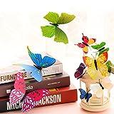 Imbry 72 Stück 3D Schmetterling Aufkleber Wandsticker Wandtattoo Wanddeko für Wohnung, Raumdekoration Klebepunkten+ Magnet (12 Blau + 12 Colour + 12 Grün + 12Gelb + 12 Rosa + 12 Rot) (Schmetterling) - 5