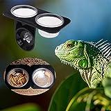 Autone Reptile Feeder Single Futternapf Fressnapf Doppelt, Kleintierfutter Wasser Zucht Spender Kunststoff, Doppelbett