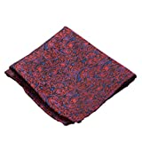 VIBHAVARI Men's Premium Velvet Pocket Square Paisley, Free Size(Red, rdblpgly-pocketsquare1)