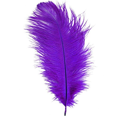 Purple Feather: Amazon.co.uk