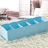 5 Zellen Plastik Organizer Aufbewahrungsbox Bindung BH Socken Schublade Kosmetikteiler ordentlich By Dragon (Blau)