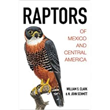 RAPTORS OF MEXICO & CENTRAL AM