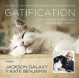 Gatification: Cómo diseñar la mejor casa para tu gato y para ti ...