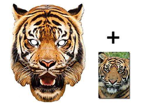 Tiger Tier Single Karte Partei Gesichtsmasken (Maske) Enthält 6X4 (15X10Cm) (Safari Kostüm Einfach)