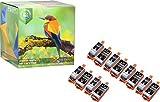 Pack DE 12 Cartouches (6 Noir & 6 Couleur) Cartouches d'encre Canon CLI-36 PGI-35...