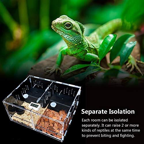 SNIIA Scatole da Allevamento Insetti Rettili Scatola da Riproduzione Acrilico Scatola per Rettili per Animali Domestici A 360 ° Trasparente per