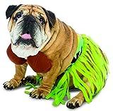 Die besten Rasta Imposta für Hund - Rasta Imposta Kostüm Hula Hund, XS Bewertungen