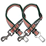 Colección de rayas multicolor Blueberry Pet - 3 m reflectante normal, collar Martingale para perros
