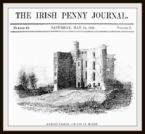 The Irish Penny Journal: Volume 1 - No. 46 - May 15, 1841 (English Edition)