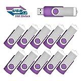 EASTBULL 10 stück 1GB Speicherstick 2.0 USB-Sticks Data Datenspeicher (Violett)
