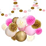 HusDow 16pcs Tissue Paper Pom Pom Flowers and Paper Lanterns Party Decoration
