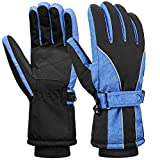 Terra Hiker Womens Waterproof Ski Gloves, Thermal Thinsulate Gloves for Winter Sports Blue S