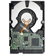Seagate Cheetah 15K.6 SAS 3-GB/s 300-GB Hard Drive - Disco duro (Serial Attached SCSI (SAS), 300 GB, 15000 RPM, 10,185 cm, 2,611 cm, 14,699 cm)