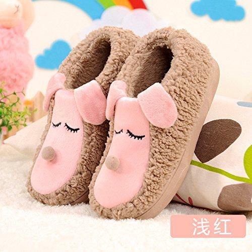 Inverno fankou pantofole di cotone coppia femminile cartoon fondo spesso in borsa con caldi scarpe home anti-skid pantofole inverno 9519/Farbe