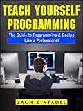 Teach Yourself Programming The Guide to Programming & Coding Like a Professional (English Edition)