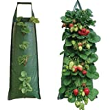 Nutley's Hanging Strawberry Growbag Planter - Dark Green