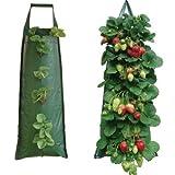 Nutley's Pflanzsack, für Erdbeeren, hängend, Dunkelgrün -