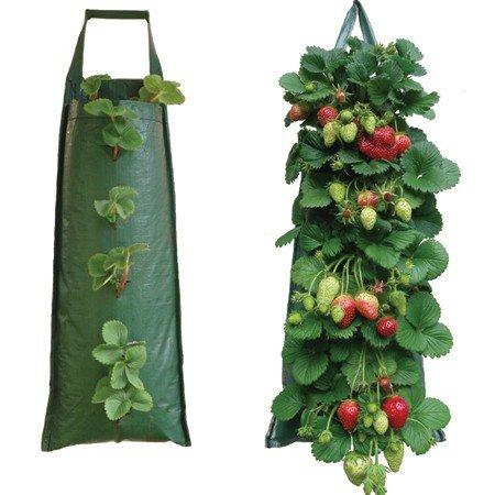 Nutley's Pflanzsack, für Erdbeeren, hängend, Dunkelgrün