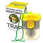 PCP, The Vespa Velutina monitoring trap - Asian hornet trap 2 x traps 4